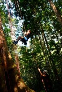 Amazonia brasilera